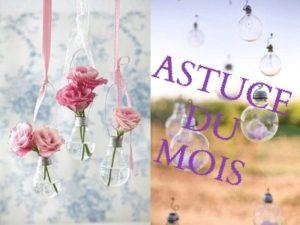 Read more about the article Astuce du MOIS de MARS